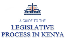 a guide to the legislative process in kenya