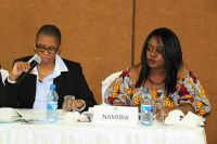 Ms.Yvonne-Dausab-and-Ms.-Chisom-Otafor-from-Namibia-Law-Reform-and-Development-Commission